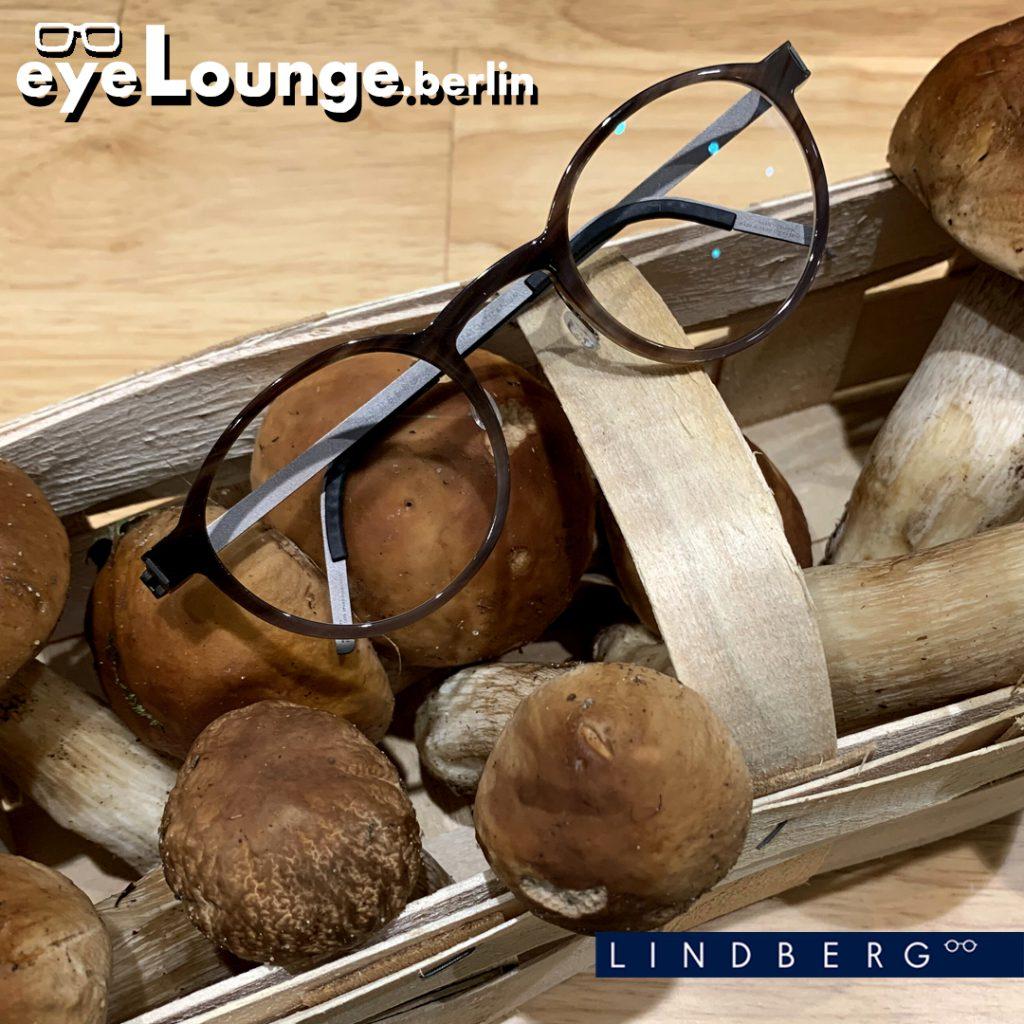 Hornbrillen von Lindberg